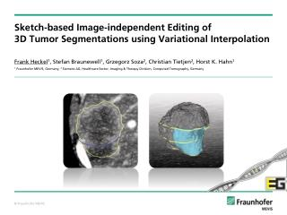 Sketch-based Image-independent Editing of  3D Tumor Segmentations  using Variational Interpolation