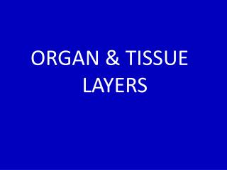 ORGAN & TISSUE   LAYERS
