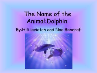 The Name of the  Animal:Dolphin .