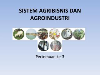 SISTEM AGRIBISNIS DAN AGROINDUSTRI