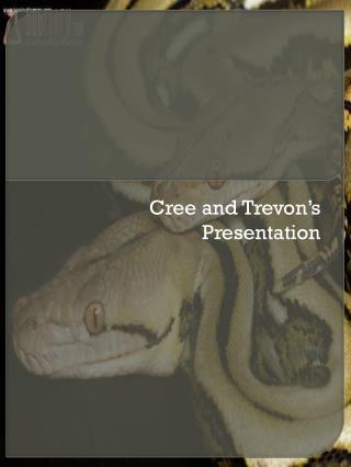 Cree and  Trevon's  Presentation
