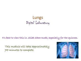 Lungs Digital Laboratory