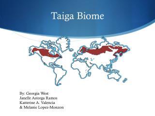 Taiga Biome
