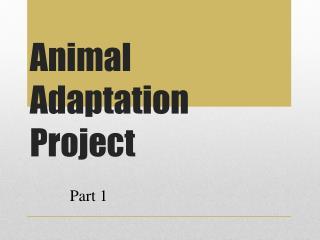 Animal Adaptation Project