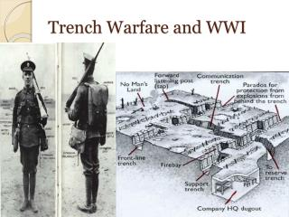 Trench Warfare and WWI