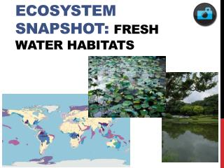 Ecosystem Snapshot: FRESH Water habitats