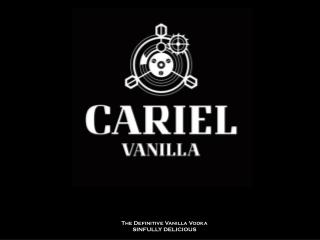 The Definitive Vanilla Vodka SINFULLY  DELICIOUS