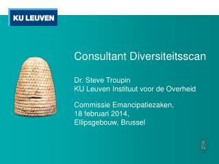 Consultant  Diversiteitsscan Dr. Steve Troupin KU Leuven  Instituut voor  de  Overheid