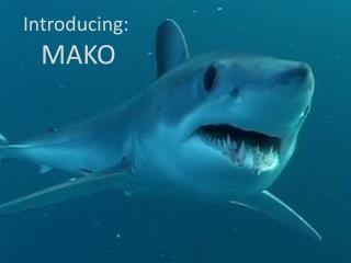 Introducing: MAKO