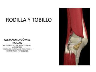RODILLA Y TOBILLO