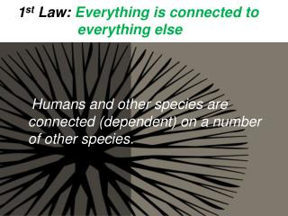1 st  Law:  Everything is connected to                 everything else