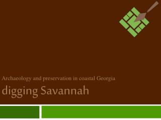 Archaeology and preservation in coastal Georgia