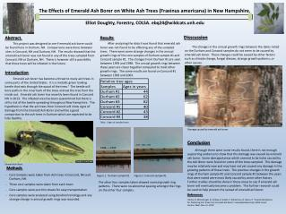 The Effects of Emerald Ash Borer on White Ash Trees ( Fraxinus americana ) in New Hampshire.