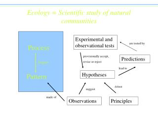 Ecology  Scientific study of natural communities
