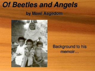 Of Beetles and Angels by M