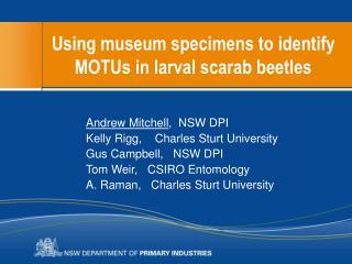 Using museum specimens to identify MOTUs in larval scarab beetles