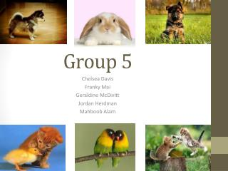 G roup 5