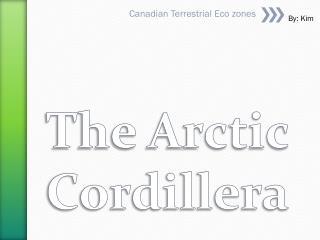 The Arctic Cordillera