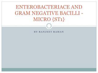 ENTEROBACTERIACE AND GRAM NEGATIVE  BACILLI - MICRO  {ST1}