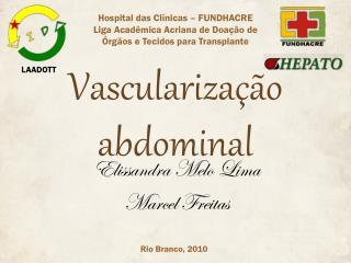 Vasculariza��o abdominal