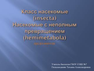Класс насекомые ( insecta ) Насекомые с неполным превращением ( hemimetabola )