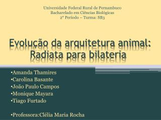 Evolução da arquitetura animal:        Radiata para bilateria