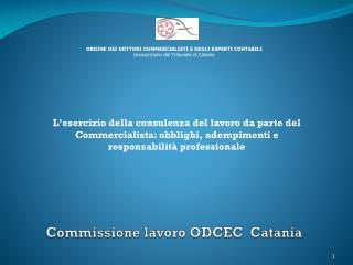 Commissione lavoro ODCEC  Catania
