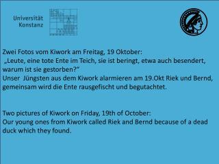 Z wei  Fotos vom  Kiwork  am  Freitag, 19 Oktober: