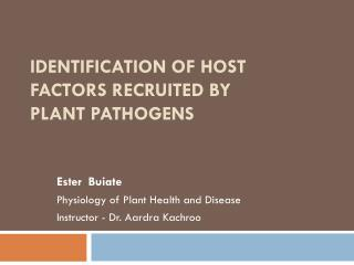 Identification of host factors recruited  by plant  pathogens