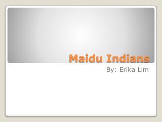 Maidu Indians