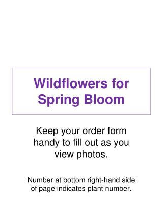 Wildflowers for Spring Bloom Keep your order form handy to ...