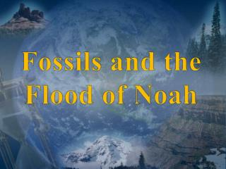 Fossils and the  Flood of Noah