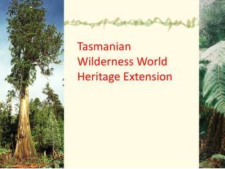 Tasmanian Wilderness World  Heritage Extension