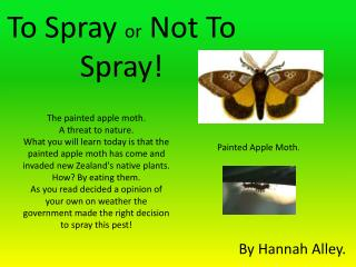 To Spray  or  Not  T o Spray!