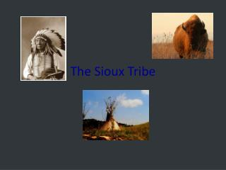The Sioux Tribe