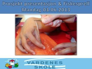 Prosjekt presentasjon & Fiskesprell Mandag 03.06.2013
