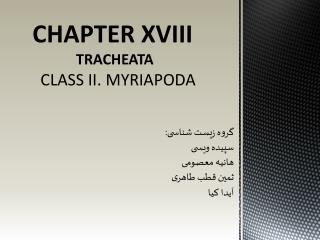 CHAPTER XVIII TRACHEATA     CLASS II. MYRIAPODA
