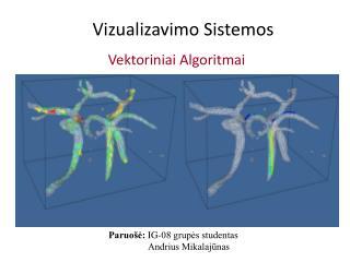 Vizualizavimo Sistemos