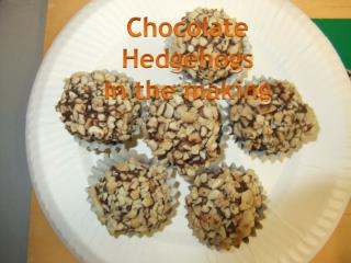 Chocolate Hedgehogs  In the making