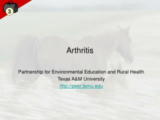Arthritis Partnership for Environmental Education and Rural ...