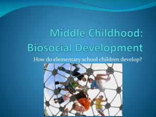Middle Childhood:            Biosocial Development