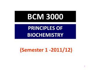BCM  3000