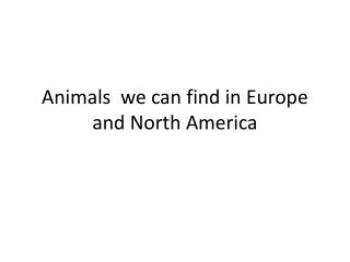 Animals  we can find in Europe and North America