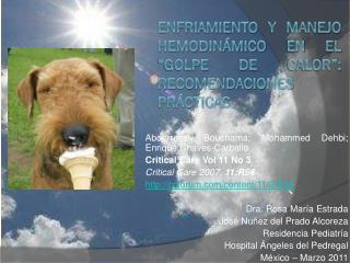 """Enfriamiento y manejo  hemodinámico  en el """"golpe de calor"""": recomendaciones prácticas."""
