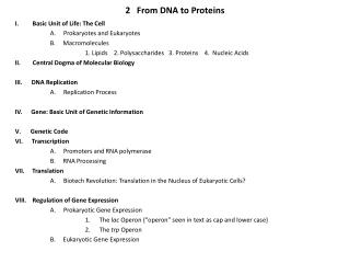 2   From DNA to Proteins