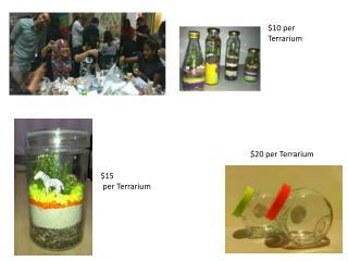 $10 per Terrarium
