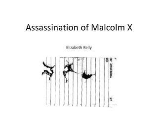 Assassination of Malcolm  X Elizabeth Kelly