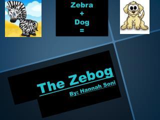 The Zebog