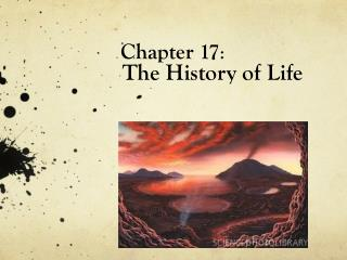 Chapter 17 :