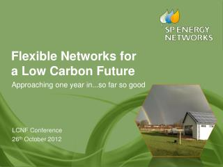 Flexible Networks for  a Low Carbon Future